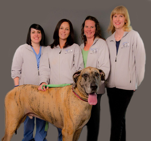 Burlington Animal Clinic staff